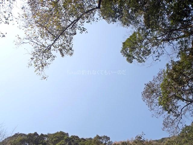 image_0543.JPG